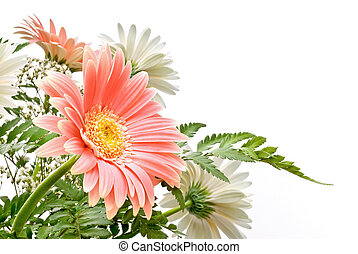 elegant composition of Gerbera flowers with delicate colours