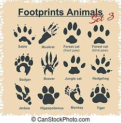 Footprints Animals - vector set.