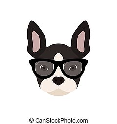 French bulldog with glasses.