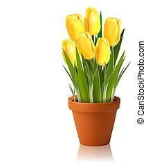 Fresh spring yellow flowers Vector illustration