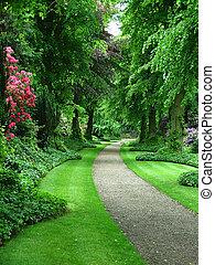 A path through a verdant garden