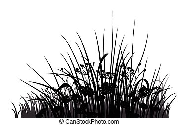 Grass and flowers silhouette