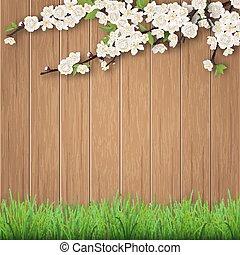 grass and spring cherry branch on b