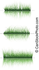 grass on water