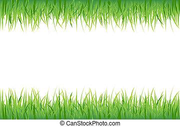 Grass On White Background, Vector Illustration