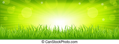 Grass With Green Background