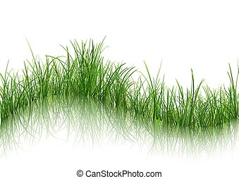 Grass with Reflection on Water