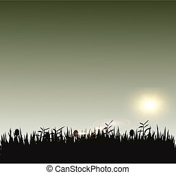Grass with sunshine silhouette