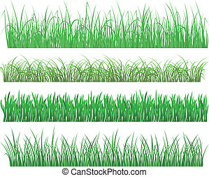 Green grass and plant elements isolated on white background