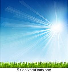 Green Grass And Sun Beam