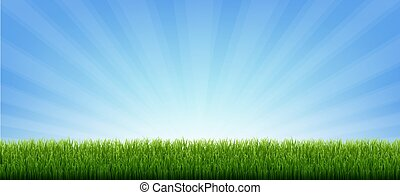 Green Grass Border Banner With Sunburst Background