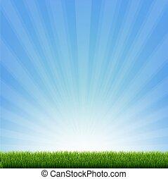 Green Grass Border With Blue Sunburst