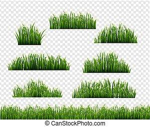 Green Grass Frame Transparent Background