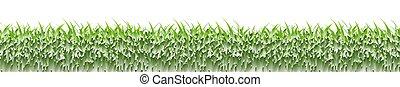 Green Grass Frame