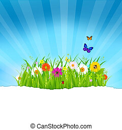 Green Grass With Flowers And Paper
