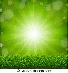 Green Grass With Sunburst Background