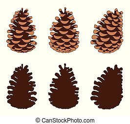 Group of different pine cones