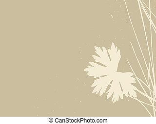 herb on brown background, vector illustration
