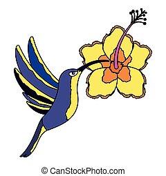 hummingbird flying hibiscus flower