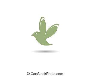 Hummingbird logo template