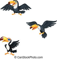 Cartoon toucan collection set