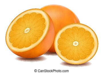 illustration of orange fruit on white background