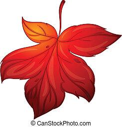 illustration of red mapple leaf on white background