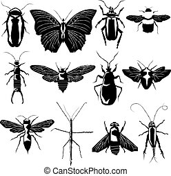 Insect and bug collection in detailed vector silhouette
