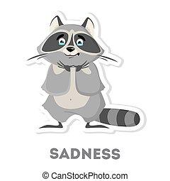 Isolated sad raccoon.