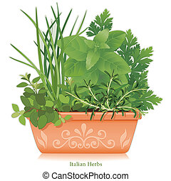 Italian herb garden, traditional flavors for Mediterranean cuisine, left to right: Oregano, Garlic Chives, Sweet Basil, Flat Leaf Parsley, Rosemary, in clay flowerpot planter with embossed floral design. EPS8 compatible. See other herbs and spices in this series.