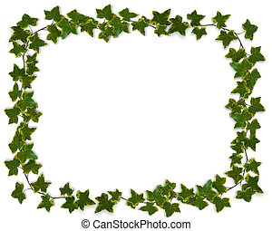 Ivy Image composition for background, border, invitation or template.
