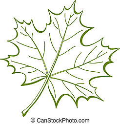 Leaf of a maple, nature symbol, monochrome vector, isolated pictogram