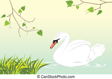 Lonely white swan swimming in a pond. Vector illustration