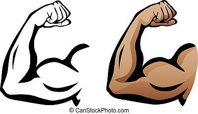 Muscular Arm Flexing Bicep