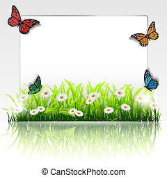 frame with grass, chamomiles and butterflies