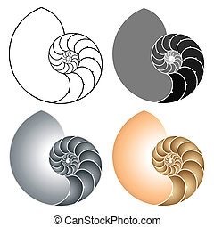 Vector illustration of a nautilus. Different variations.