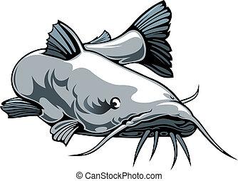 nice illustrated catfish isolated on white background