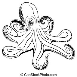 Vector octopus represented in the form of a tattoo