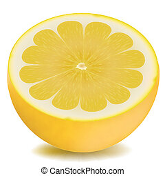 illustration of half piece of lemon on isolated background