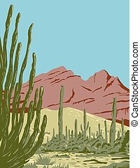 WPA poster art of the Organ Pipe Cactus National Monument and biosphere reserve located in Arizona that shares border with the Mexican state of Sonora done in works project administration style style.