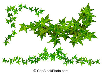 Parts of Ivy. Horizontal and corner Ivy tendril part. File includes clipping path.
