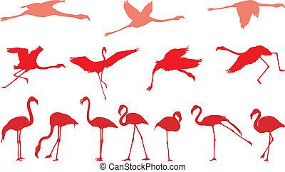 Pink flamingo, a set of vectors