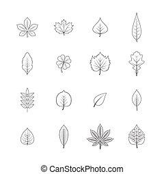 Forest trees eco elements line graphic icons set with maple oak aspen leaves black isolated vector illustration