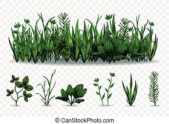 Realistic Green Grass Set