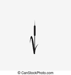 reeds illustration vector icon