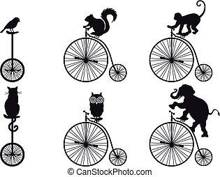 retro bicycle with animals, vector