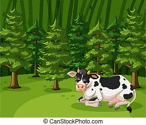 Scene with one cow in the big forest