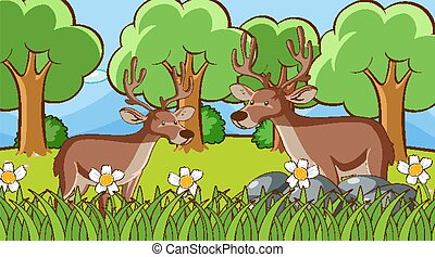 Scene with two deers in forest