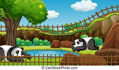 Scene with two pandas in the