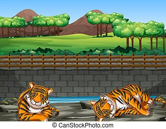 Scene with two tigers in the